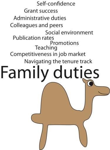 CamelDuties