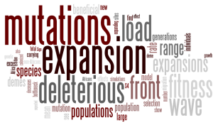 Wordle of Peischl et al 2013
