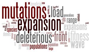 Wordle of Peischl et al 2013