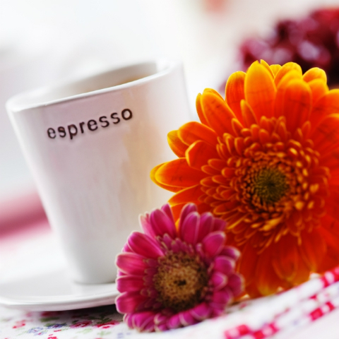 Spring_coffee_morning_small