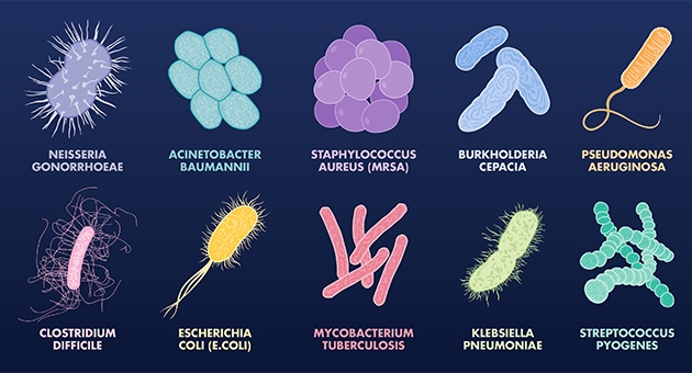 Ten Most Dangerous Antibiotic Resistant Bacteria