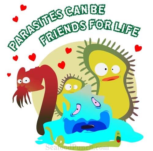 parasite-buddies
