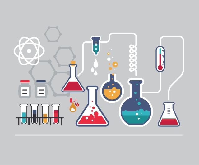 science16.jpg