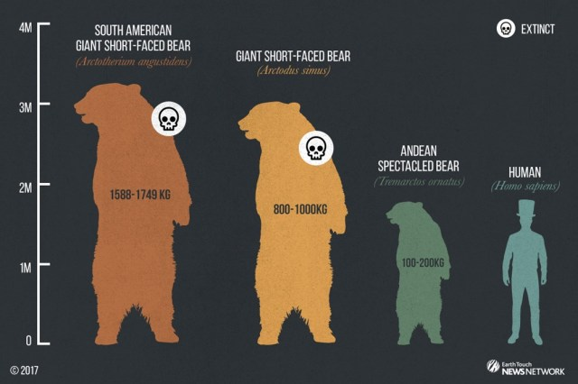 short-faced-bear_size-graphic_2017_05_23